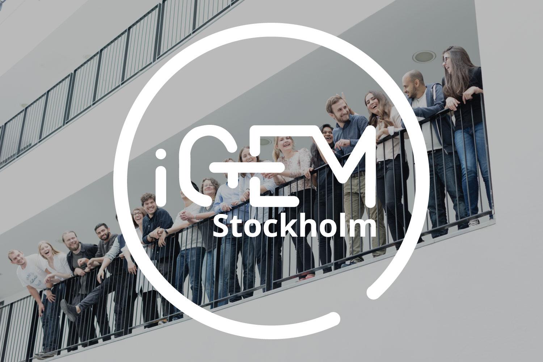 igem-stockholm-team